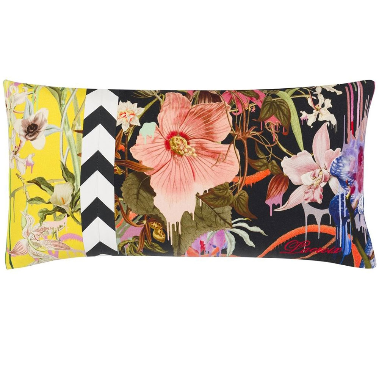 Orchids Fantasia Prisme - Vorderseite