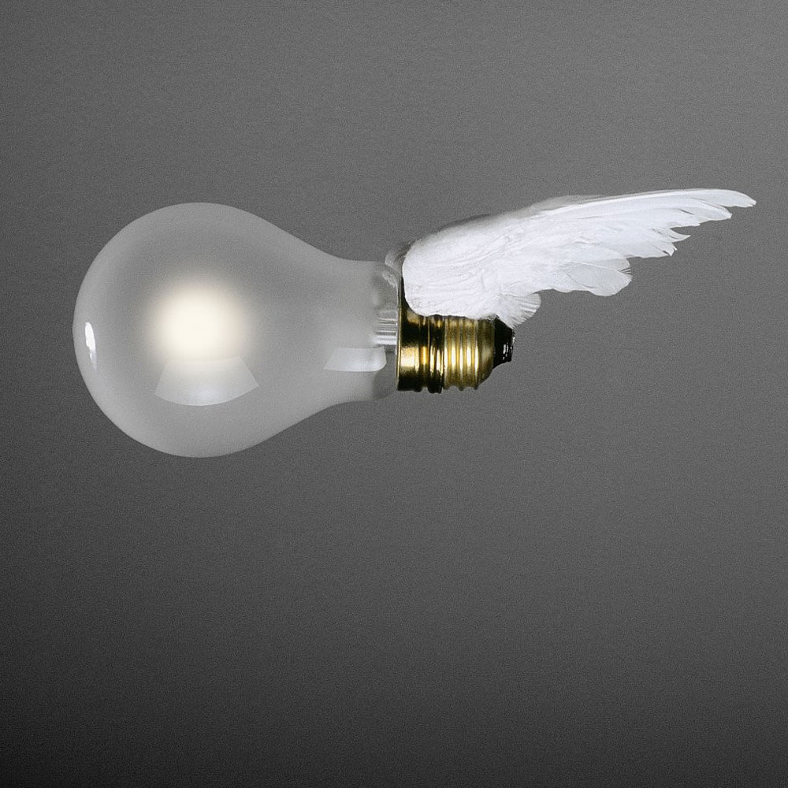 Glühbirne mit Flügelpaar für Birdie