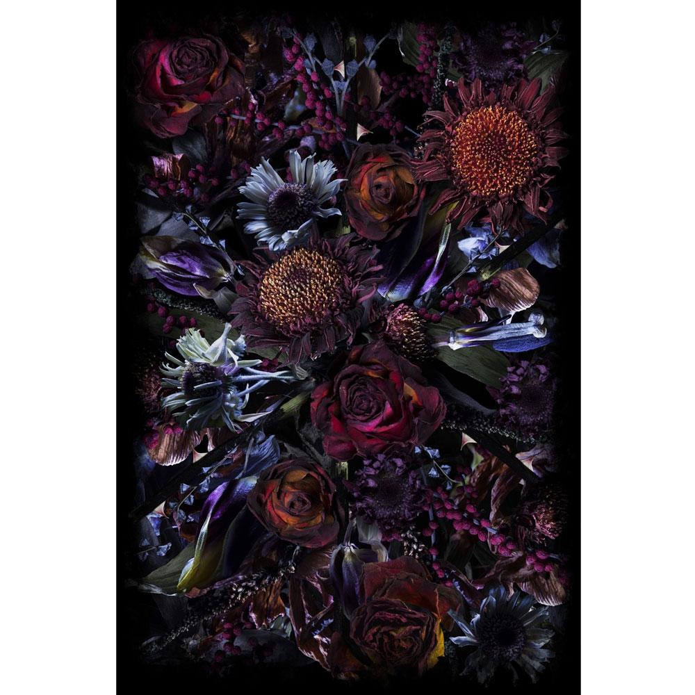 Fool's Paradise - 200x300 cm