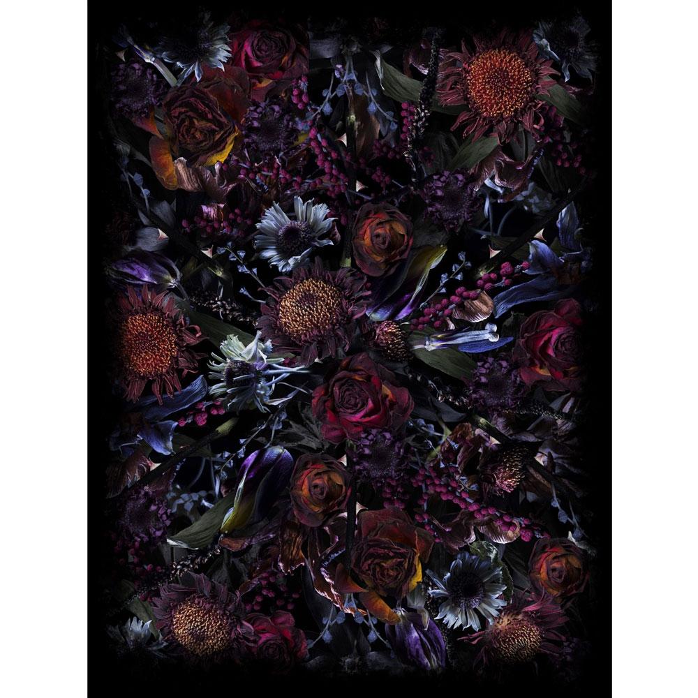 Fool's Paradise - 300x400 cm