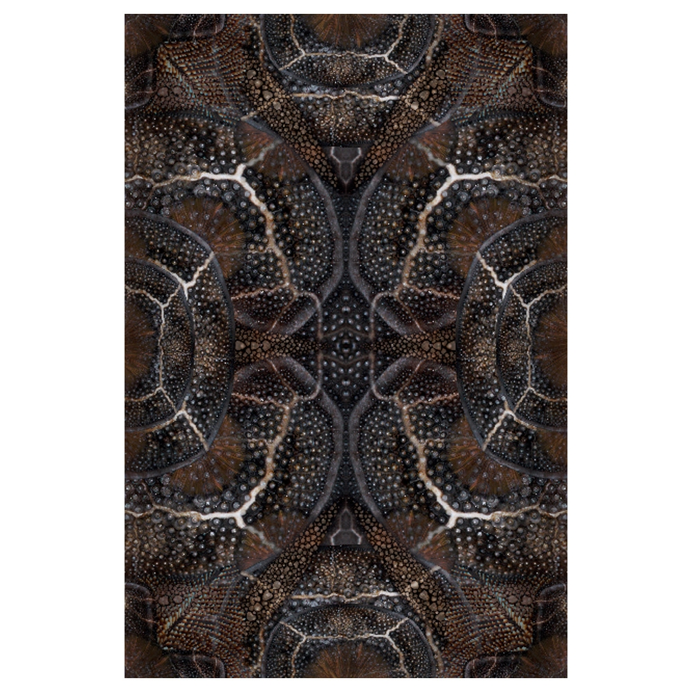 Moooi Carpets - Teppich Blooming Seadragon