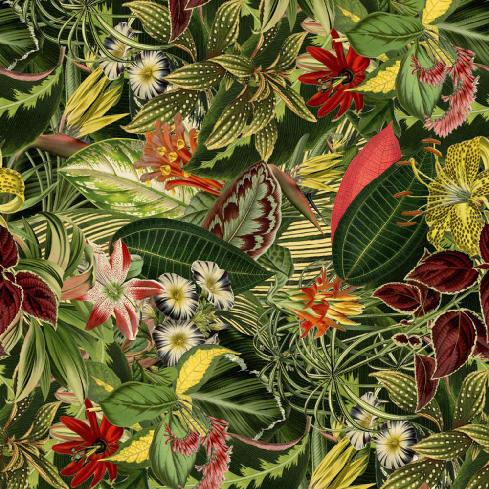 Moooi Carpets Herbarium of Extinct Plants Broadloom