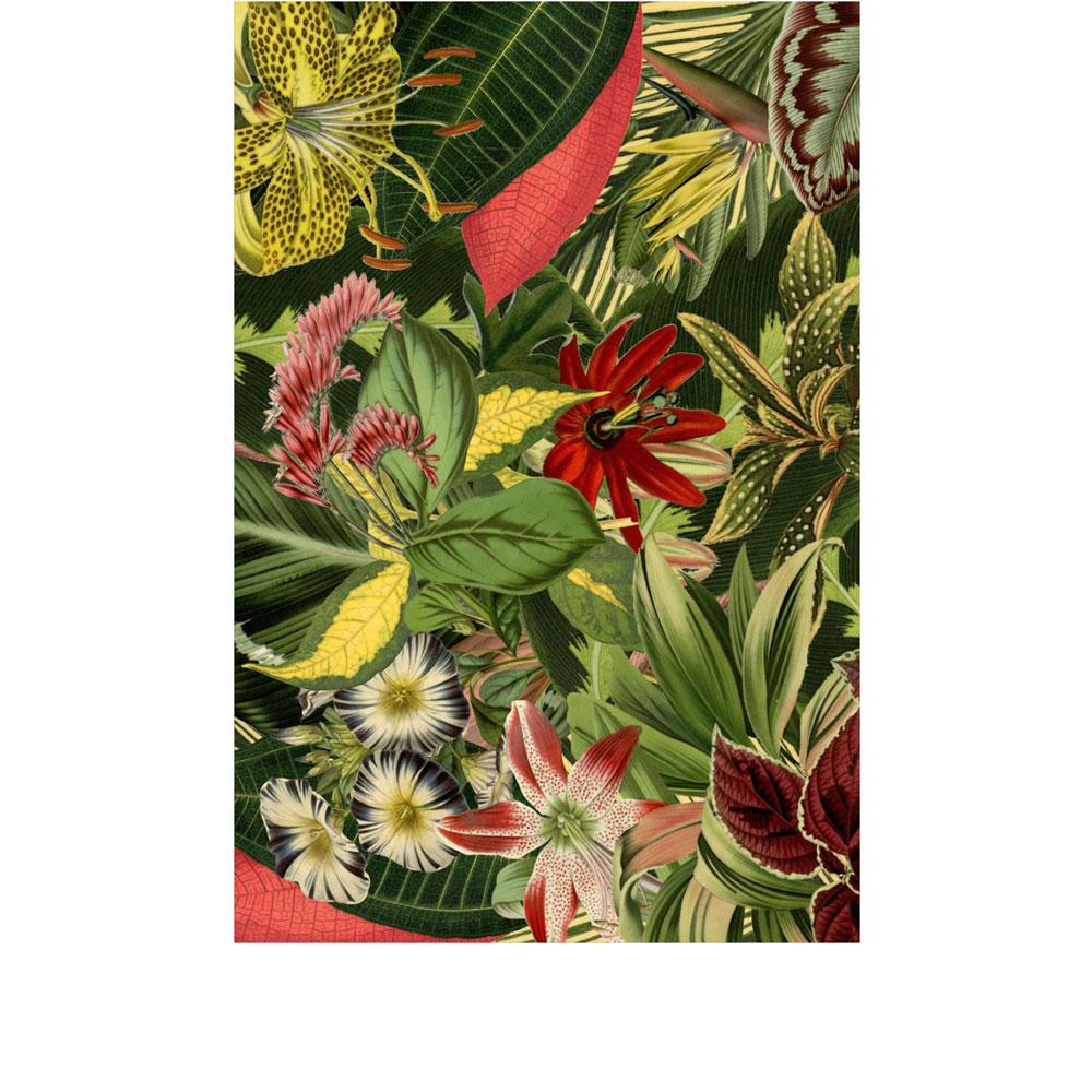 Moooi Carpets Herbarium of Extinct Plants Rectangle