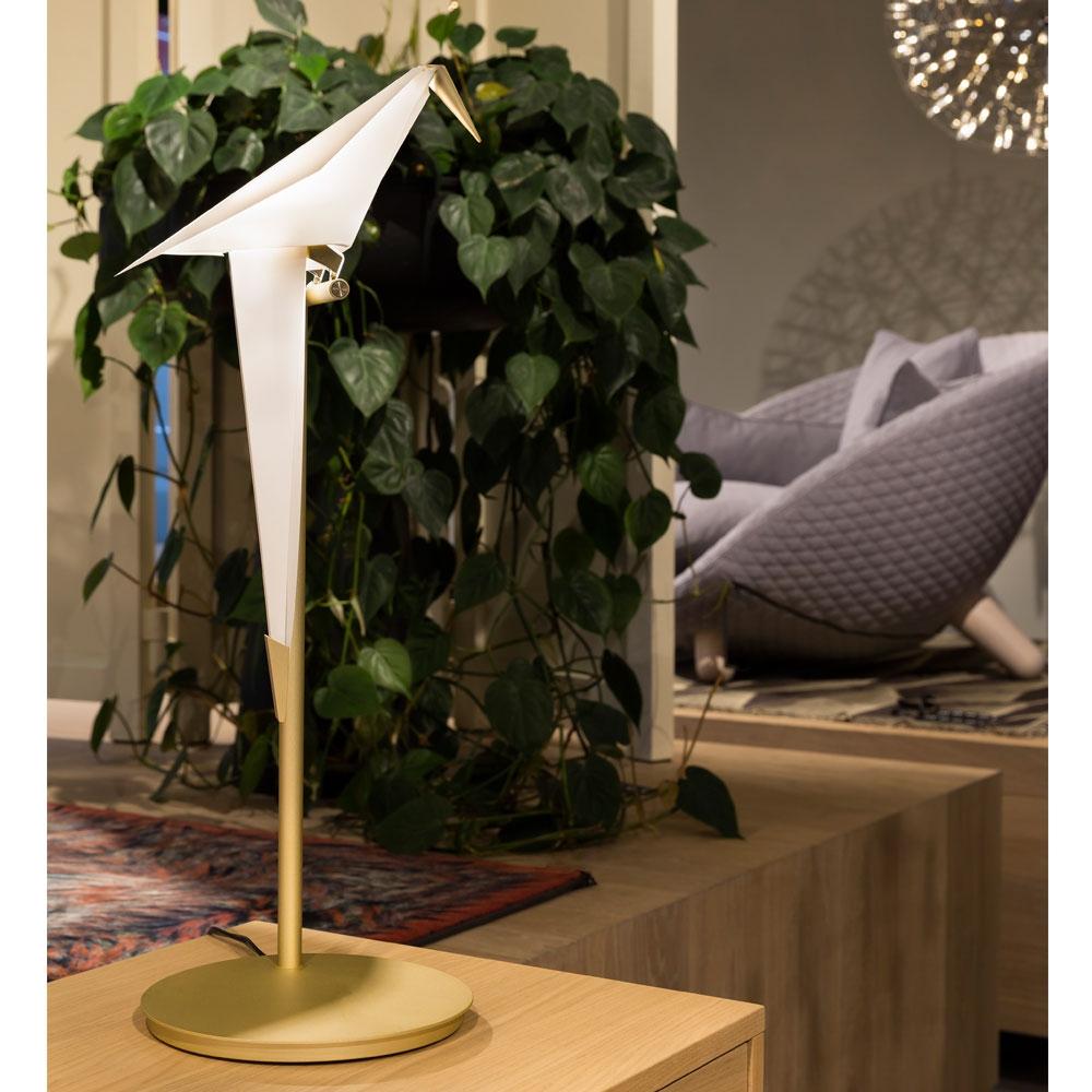 Perch Light Table