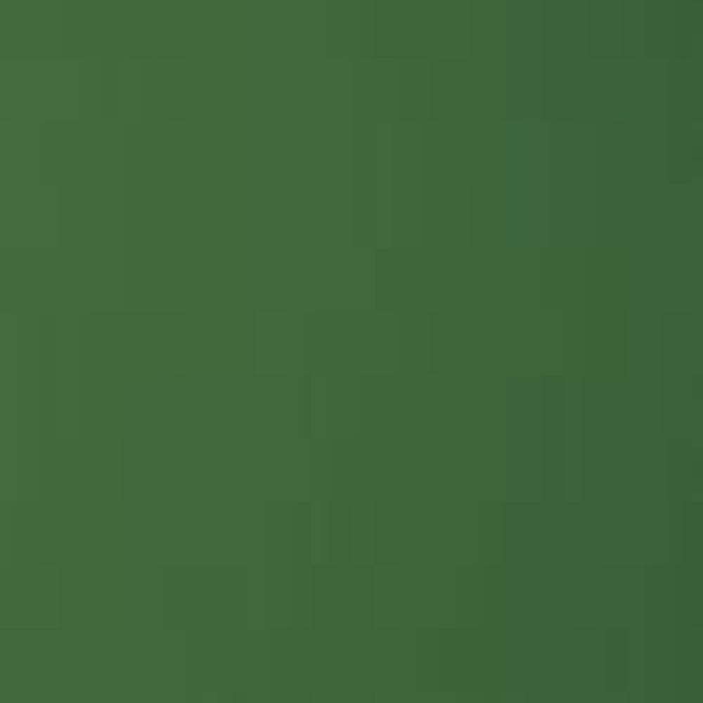 RAL 6010/ grasgrün