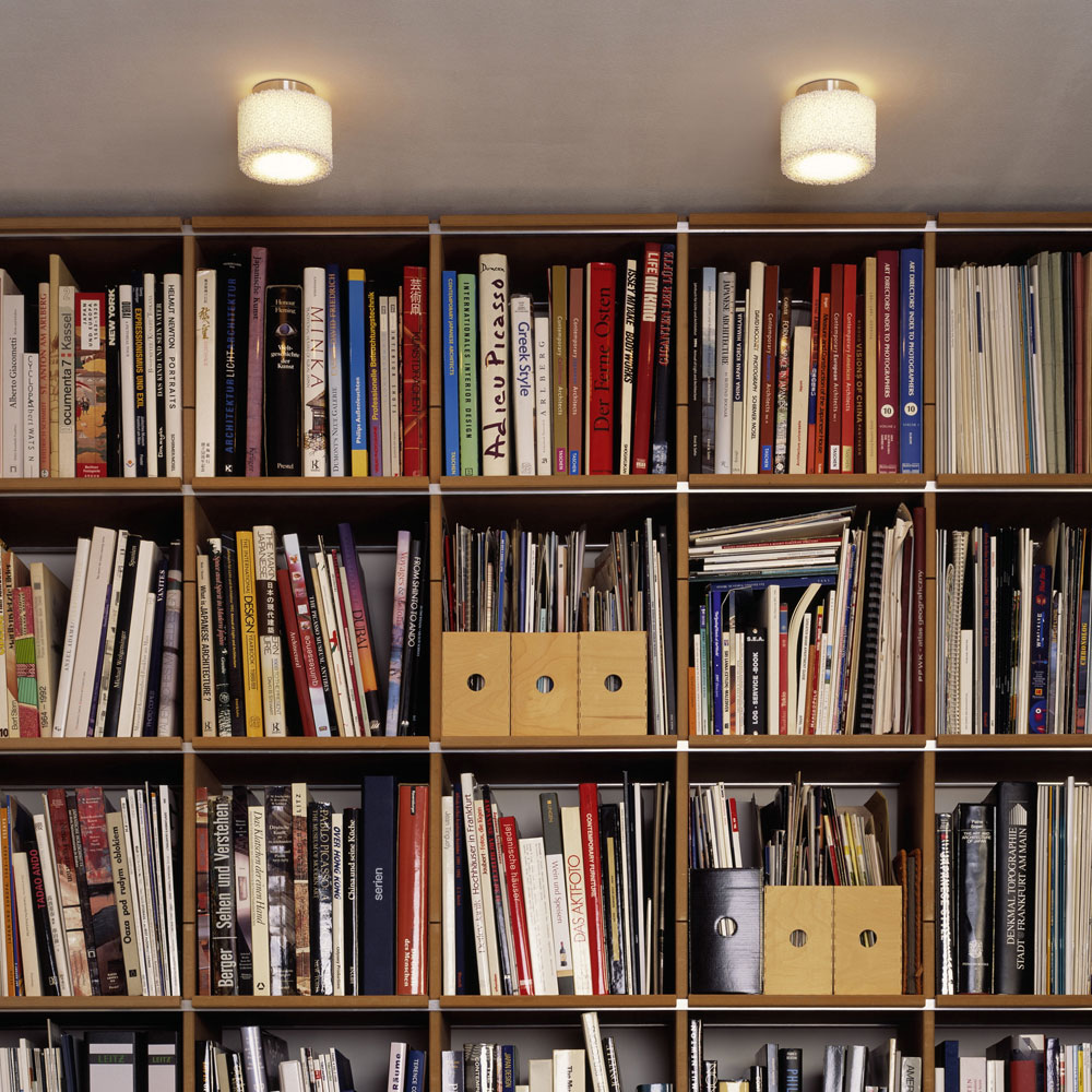 Reef Ceiling - vor einem Bücherregal